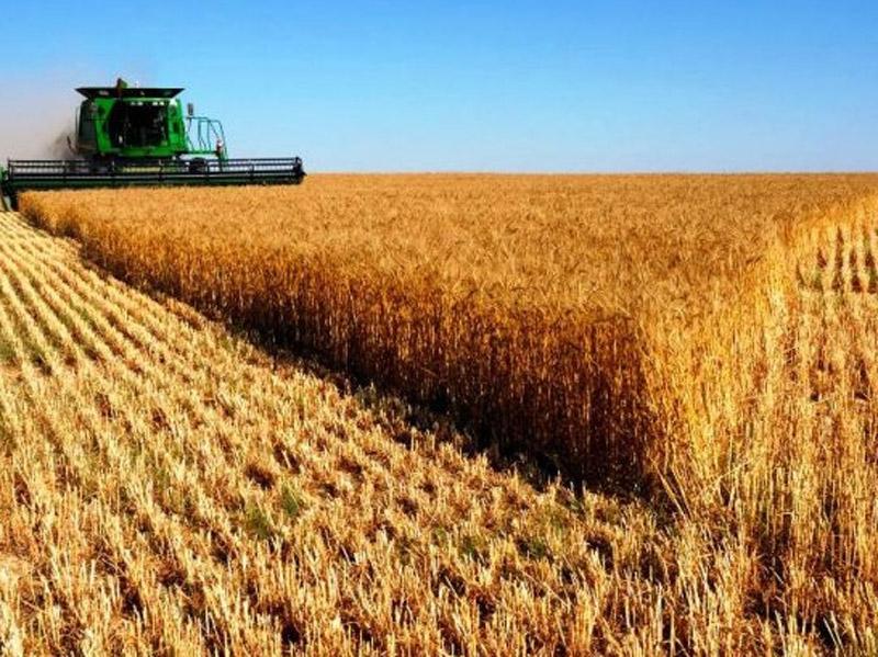 Σταθερή φιξ ενίσχυση 1.250 ευρώ το χρόνο για μικροκαλλιεργητές προβλέπει προαιρετικά το σχέδιο νέας ΚΑΠ