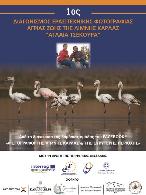 Διαγωνισμός ερασιτεχνικής φωτογραφίας άγριας ζωής της λίμνης Κάρλα «Αγλαΐα Τσεκούρα» με την αρωγή της Περιφέρειας Θεσσαλίας